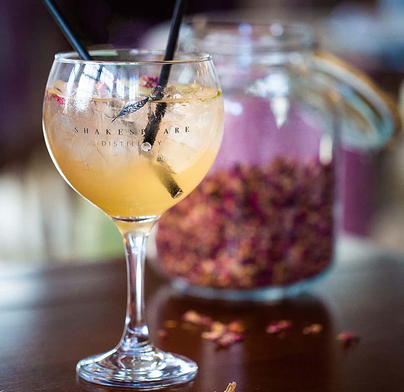 shakespeare's gin