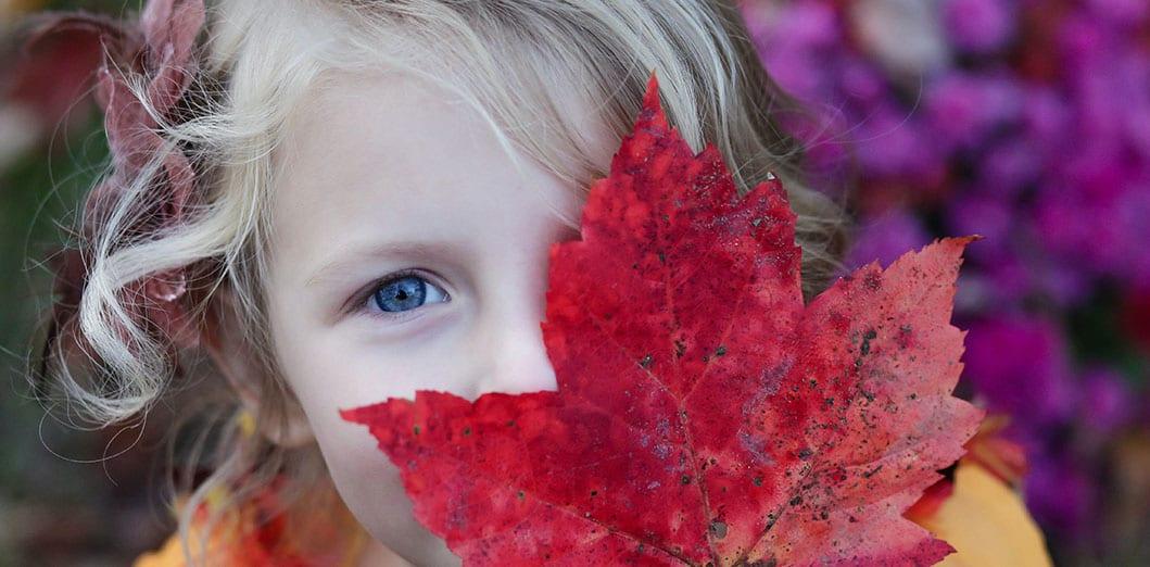 October Half term in stratford-upon-avon